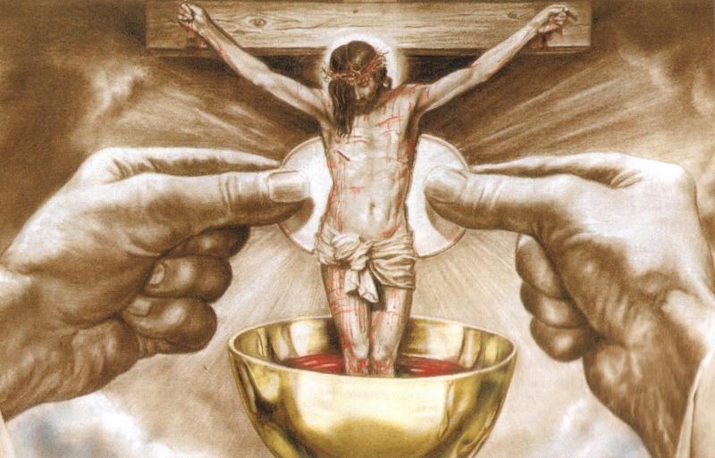 Celebransi Niedzielnych Mszy Świętych